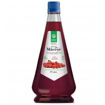 Sirop de macese 250 ml Steau Divina