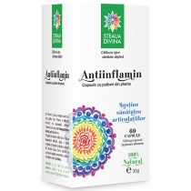 Antiinflamin 60 cps  Steau Divina
