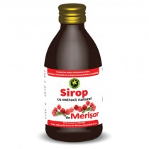 Sirop Merisor 250Ml (Am.Sticla) Hypericum