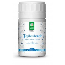 Testosterol 60 cps Steau Divina