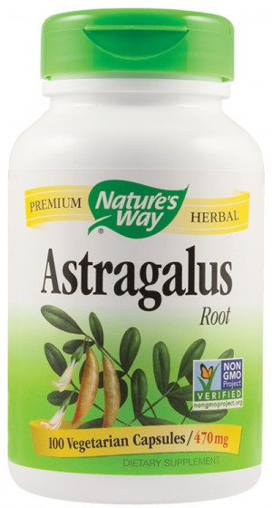 ASTRAGALUS ROOT 100cps NATURE'S WAY