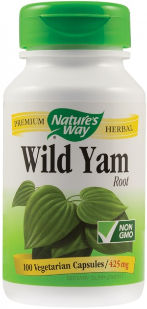 WILD YAM 100cps  NATURE'S WAY